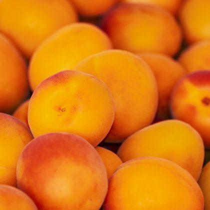 apricots-3433818_1280